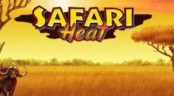 Safari Heat XO GAME