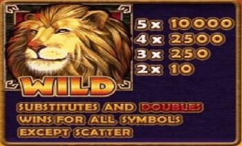 Safari Heat สัญลักษณ์ Wild