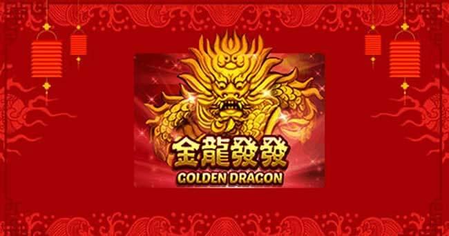 Golden Dragon XO GAMING